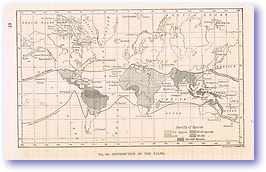 Distribution of Palms - 1888 (Our Earth and its Story - Vol 3 - Published: 1889) 600 DPI