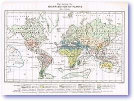 Distribution of Plants - 1887 (Our Earth and its Story - Vol 2 - Published: 1888) 600 DPI