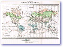Distribution of Vegetation - 1887 (Our Earth and its Story - Vol 2 - Published: 1888) 600 DPI